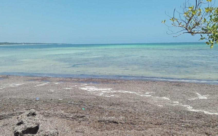 2 acres beach plot in Nyali behind city mall