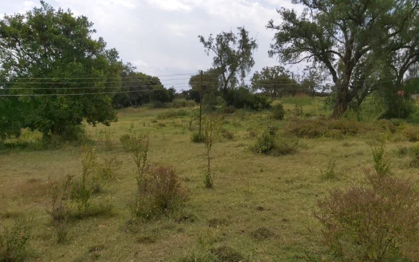 23 ACRES FOR SALE IN MUKIMA, NANYUKI